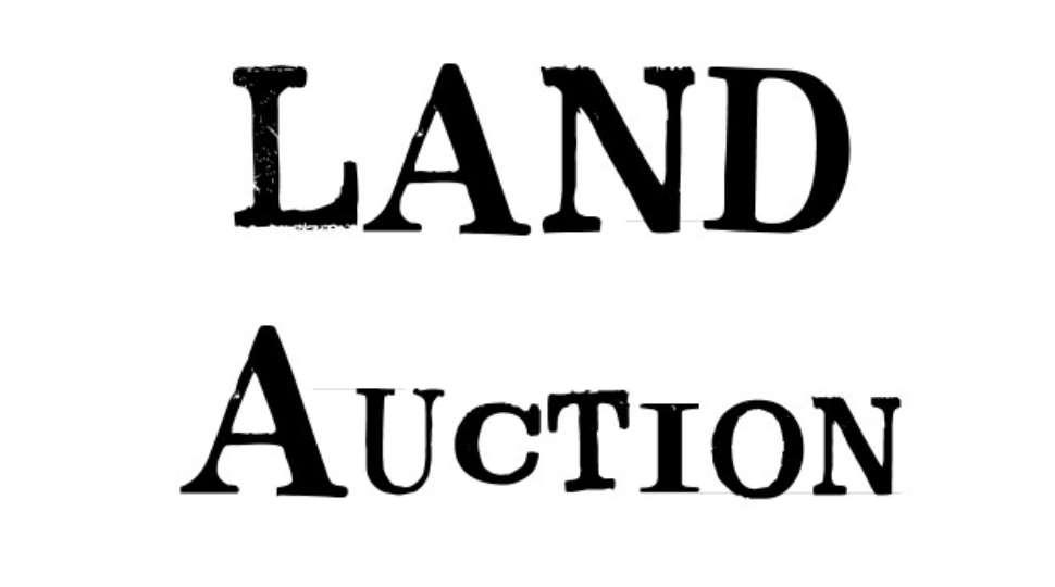 LANDS[3].jpg